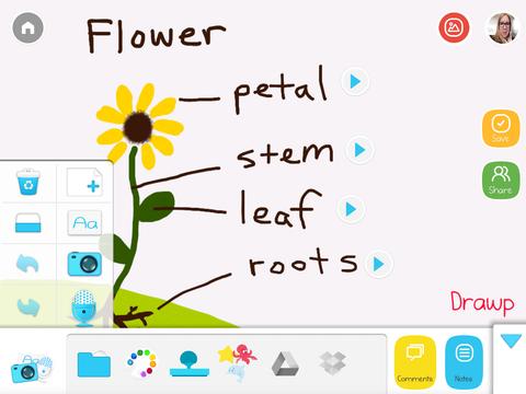 Drawp flower photo 2
